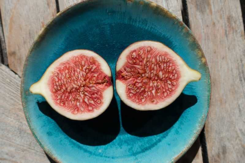 figs promote longevity