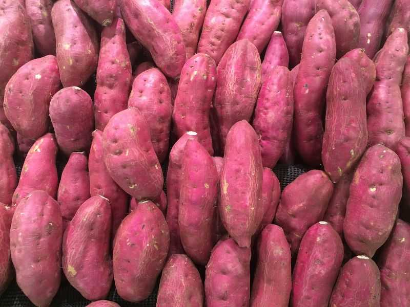 Sweet Potatoes is one of the foods to eat to live longer