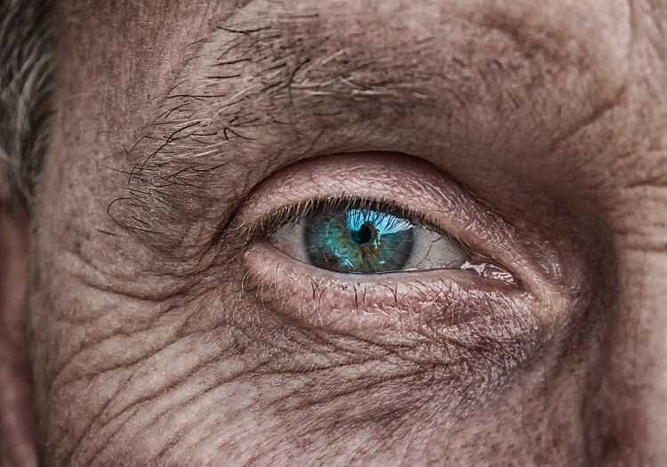 centenarian secrets