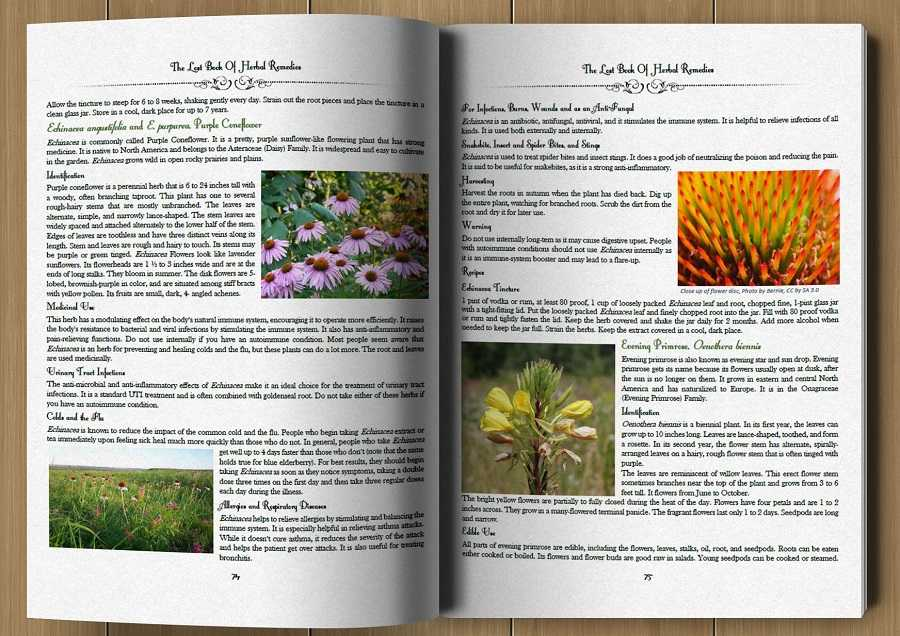 Example pages from within the book