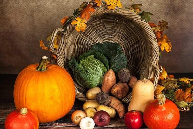 pumpkins and vegetables