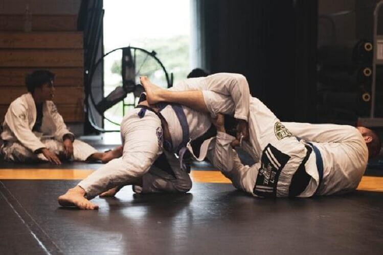 brazilian jiu jitsu fighters